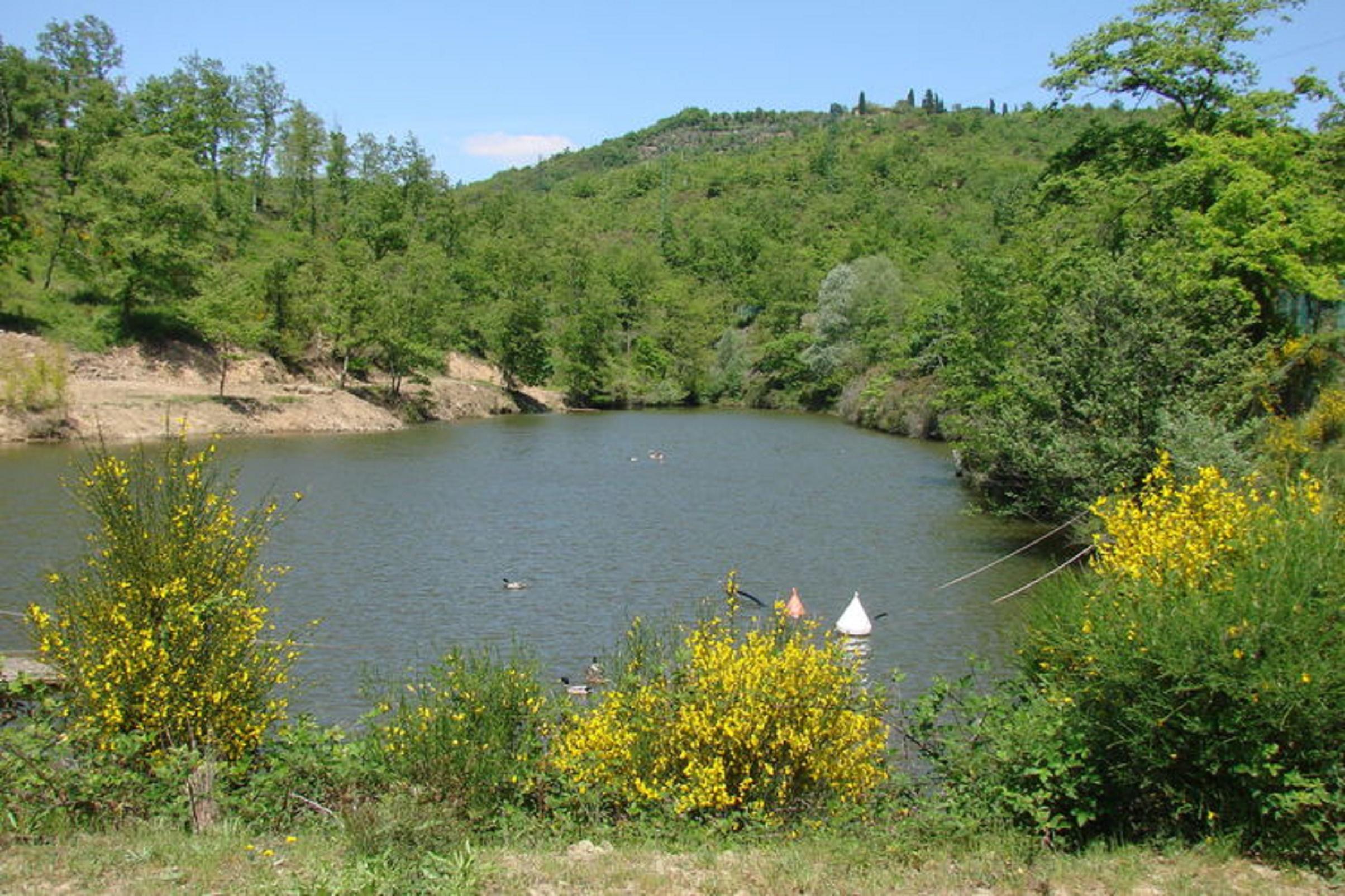 Lake in Reserve