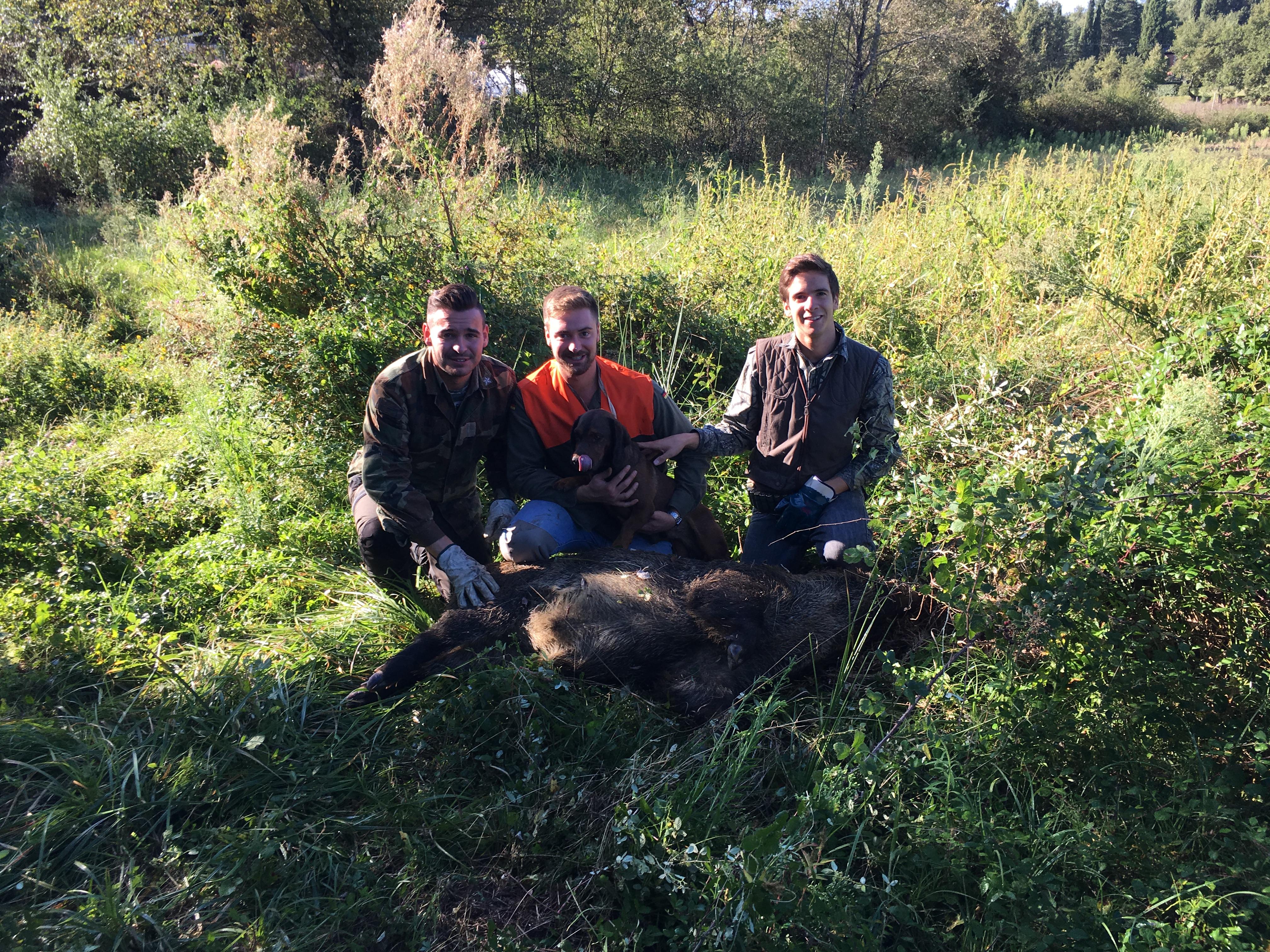 Una sessione di caccia al cinghiale in toscana